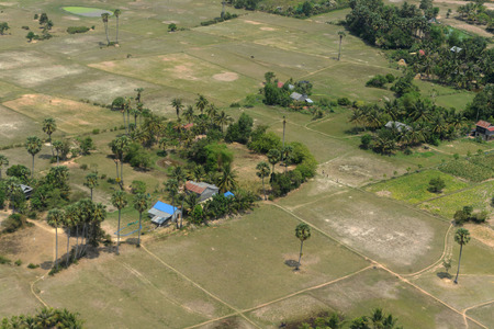 feld: The Landscape with a ricefield near the City of Siem Riep in the west of Cambodia. Editorial