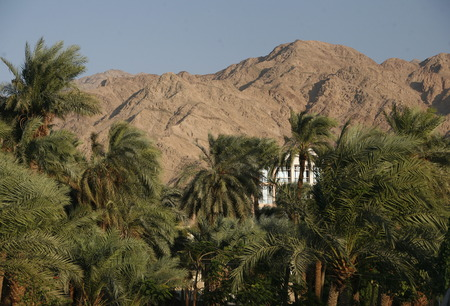 the Landscape allround the city of Aqaba on the red sea in Jordan in the middle east.