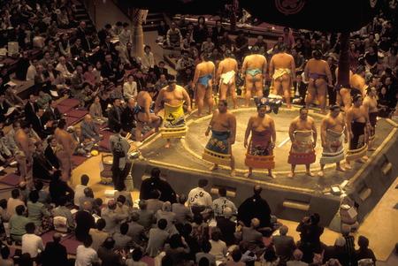 アジアでは、日本の東京の市内中心部で相撲舞台で相撲の戦い