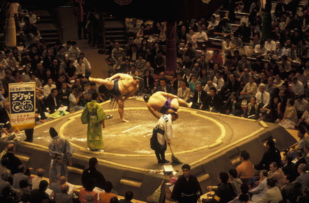 sumo: a sumo fight in the sumo arena in the City center of Tokyo in Japan in Asia,