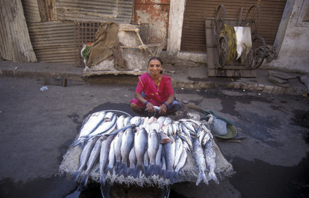 a women sales fish at the market in the city of Surat in the Province of Gujarat in India.
