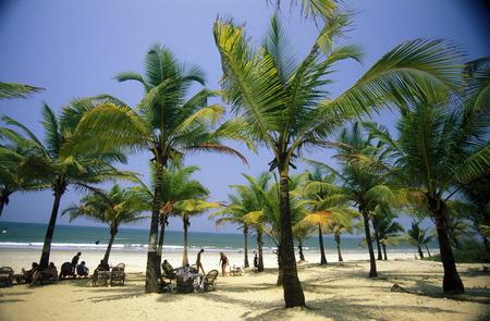natue: the beach of Anjuna in the Province Goa in India.