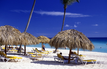 a Beach at the Village of  Punta Cana in the Dominican Republic in the Caribbean Sea in Latin America.