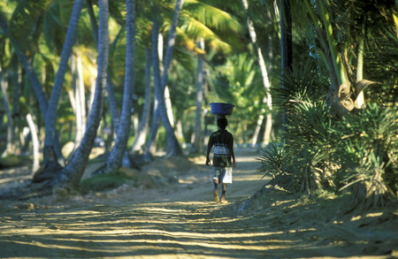 smal: a smal road at the Village of Las Terrenas on Samanaon in The Dominican Republic in the Caribbean Sea in Latin America. Editorial