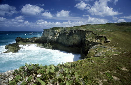 the coast at the Village of  Punta Cana in the Dominican Republic in the Caribbean Sea in Latin America. photo