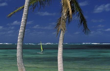 republik: Die Strandlandschaft bei Bavaro an der Ostkueste an der Karibik in der Dominikanische Republik.  (KEYSTONEUrs Flueeler)