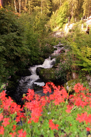 wasser: A waterfall in the forest in the village of Triberg in the Blackforest in the south of Germany