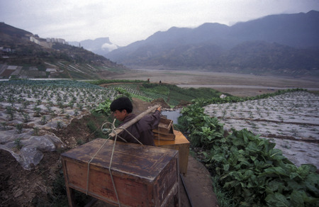 three gorges dam: agro culture in the village of Fengjie at the yangzee river in the three gorges valley up of the three gorges dam project in the province of hubei in china.