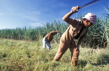 カリブ海のキューバ オルギン市近くの農家。 報道画像