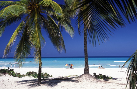 Ein Strand an der Küste von Varadero auf Kuba in der Karibik. Standard-Bild - 35731695