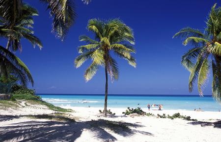 Ein Strand an der Küste von Varadero auf Kuba in der Karibik. Standard-Bild - 35731700