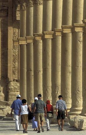 reisen: Die Ruinen von Palmyra in der Wueste Faydat in Syrien im Mittleren Osten in Arabien.