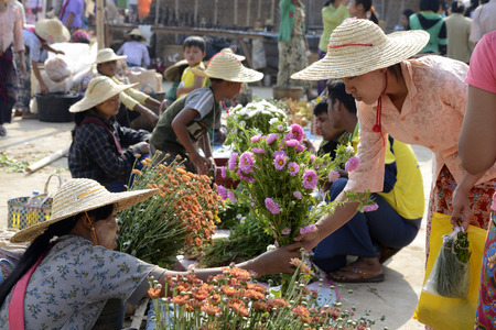daw: People at the Market at the Village of Phaung Daw Oo at the Inle Lake in the Shan State in the east of Myanmar in Southeastasia.
