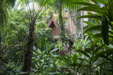the Jim Thompson House with the garden near the Siam Square in the city of Bangkok in Thailand in Southeastasia.