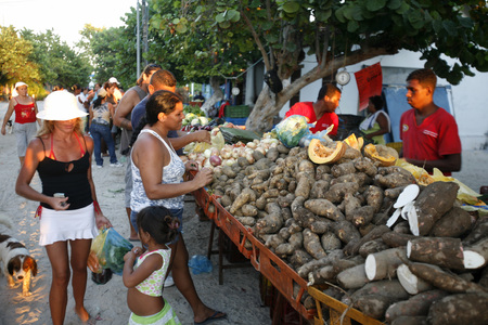 southamerica: the market in the village on the Gran Roque Island at the Los Roques Islands in the caribbean sea of Venezuela.