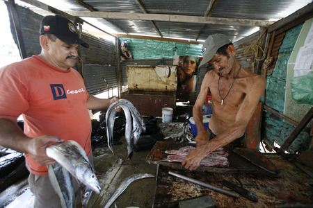 isla: the fish market at the beach in the town of Juangriego on the Isla Margarita in the caribbean sea of Venezuela.