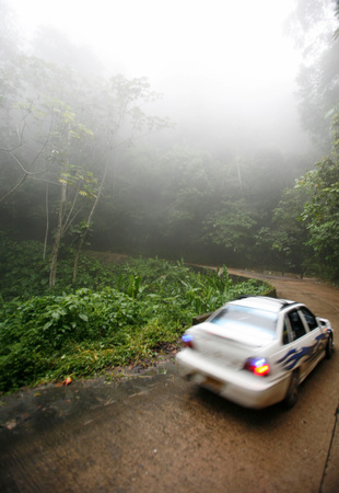southamerica: a road over a pass in the nature and forest near the village of choroni on the caribbean coast in Venezuela.