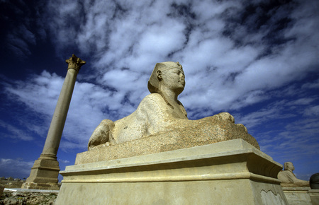 alexandria egypt: the pompey pillar in the city centre in the city of Alexandria on the Mediterranean sea in Egypt in north africa