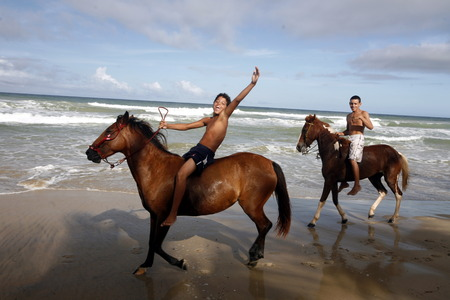 southamerica: horse  the Coast at the beach in the town of Cuacuco on the Isla Margarita in the caribbean sea of Venezuela.