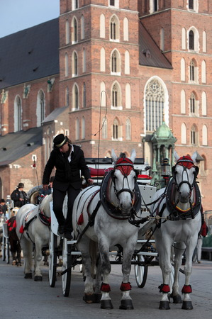 rynek: a horse drawn carriage at the Rynek Glowny square with the church of St Mary in the old town of Cracow in Poland in east Europe. Editorial