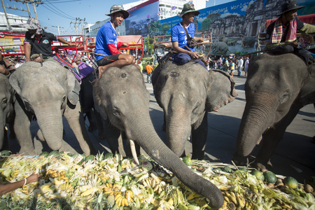 surin: Elephants and People at the Elephant Square in the city centre of Surin at the Elephant Round-up Festival in the city of Surin in Northeastern Thailand in Southeastasia.