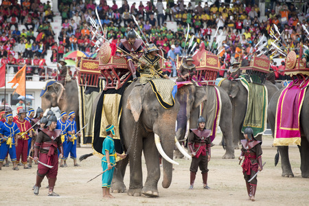 surin: the big Elephant show in the Stadium at the Elephant Round-up Festival in the city of Surin in Northeastern Thailand in Southeastasia.