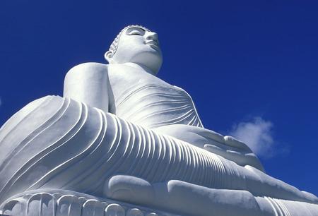 sri lanka temple: the Big Buddha at the Kandy Temple in the town of Kandy of Sri Lanka in Asien.