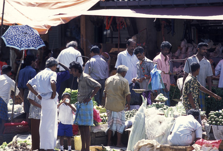 agriculture sri lanka: the market in the town of Hikkaduwa in the southwest of Sri Lanka in Asien.