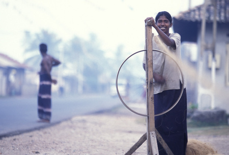 agriculture sri lanka: a women at work near the town of Hikkaduwa in the southwest of Sri Lanka in Asien.