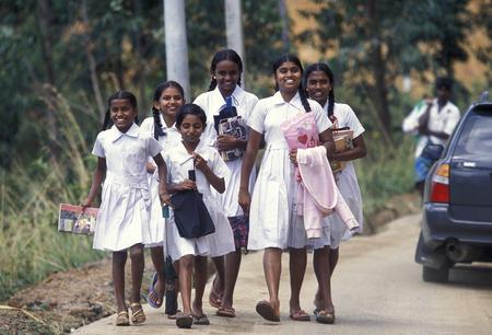 school childern near the town of Hikkaduwa in the southwest of Sri Lanka in Asien.