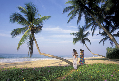 asien: a beach at the coast of Hikaduwa at the westcoast of Sri Lanka in Asien. Editorial
