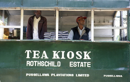 asien: a tea shop at a tea plantation in the town of Nuwara Eliya in Sri Lanka in Asien. Editorial