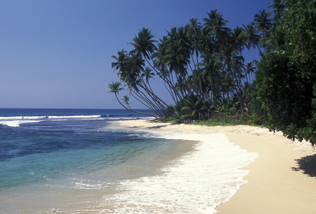 asien: a beach at the coast of Hikaduwa at the westcoast of Sri Lanka in Asien. Stock Photo