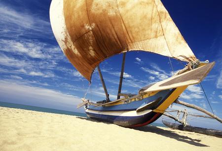 fishingboat: Dhoni Fishingboats at the coast of Nagombo at the westcoast of Sri Lanka in Asien.