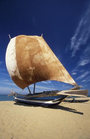 fishingboats: Dhoni Fishingboats at the coast of Nagombo at the westcoast of Sri Lanka in Asien.