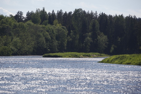 gauja: the gauja river near the town of sigulda near city of riga in latvia in the baltic region in europe. Editorial