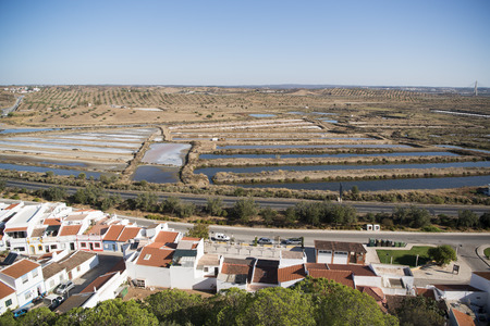 flor: the Flor de Sal at the town of Castro Marim at the east Algarve in the south of Portugal in Europe. Stock Photo