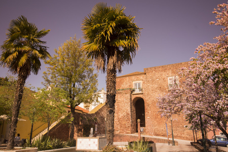 castel: the Castelo in the old Town of Silves at the Algarve of Portugal in Europe.