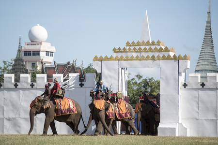 Elephants at the Elaphant Show in the Stadium at the traditional Elephant Round Up Festival in the city of Surin in Isan in Thailand. Thailand, Isan, Surin, November, 2017 報道画像