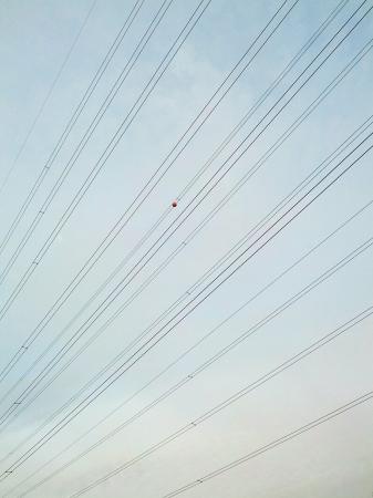 провода: Полоски линий
