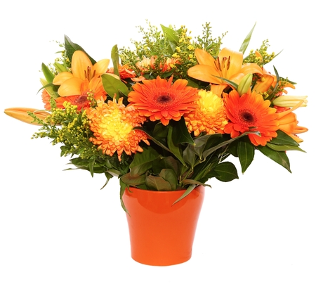 goldenrod: Orange flower bouquet (with asiatic lilies, mums, goldenrod, laurel-leaved snail leaves) in an orange ceramic flowerpot isolated on white background
