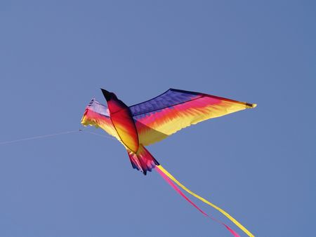 Flying bird shape kite Stock Photo - 3674468