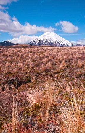 doom: Mt Ngaurohoe in Tongariro National Park, New Zealand. Iconic snow-capped mountain was used in the Lord of the Rings movies and is better known as Mount Doom.