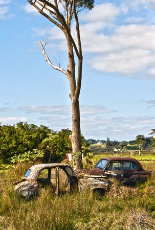 Abandoned cars in the New Zealand Countryside. photo