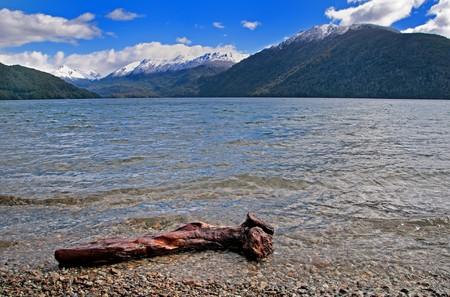 nahuel: Washed up log at Lago (Lake) Nahuel Huap in Argentina