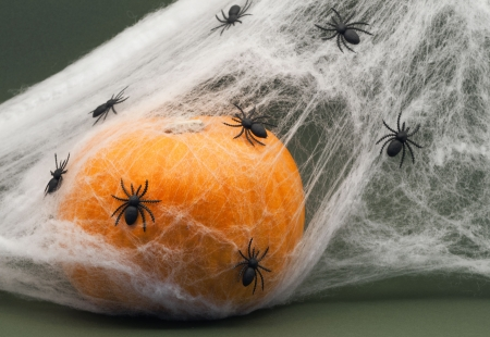 Halloween Pumpkin with Spiders on a Green Background.