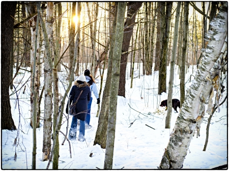 snowshoeing: Snowshoeing in Canada at sunset