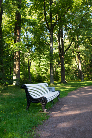 timber bench seat: White wooden seat bench in green park