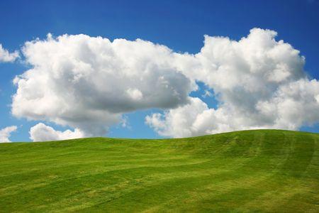 expanse: Green grass on a golf course Stock Photo