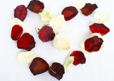 Heart shape border of red and white rose petals Stock Photo - 13612600
